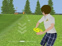 Picture of Disk Golf