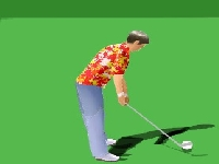 Picture of Golf Master 3D