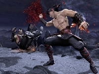 Picture of Kombat Fighters