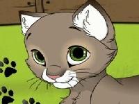 Picture of Kitten Maker