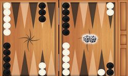 Picture of backgammon
