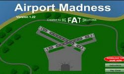 Picture of Airport Madness