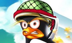Picture of Angry Penguin 2
