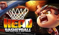 Picture of Heads basketball