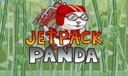 Picture of Jetpack Panda