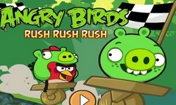 Picture of angry bird rush rush