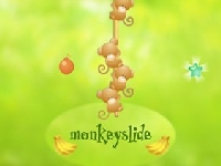 Picture of Monkeyslide