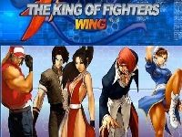 Picture of King of Fighters Wing